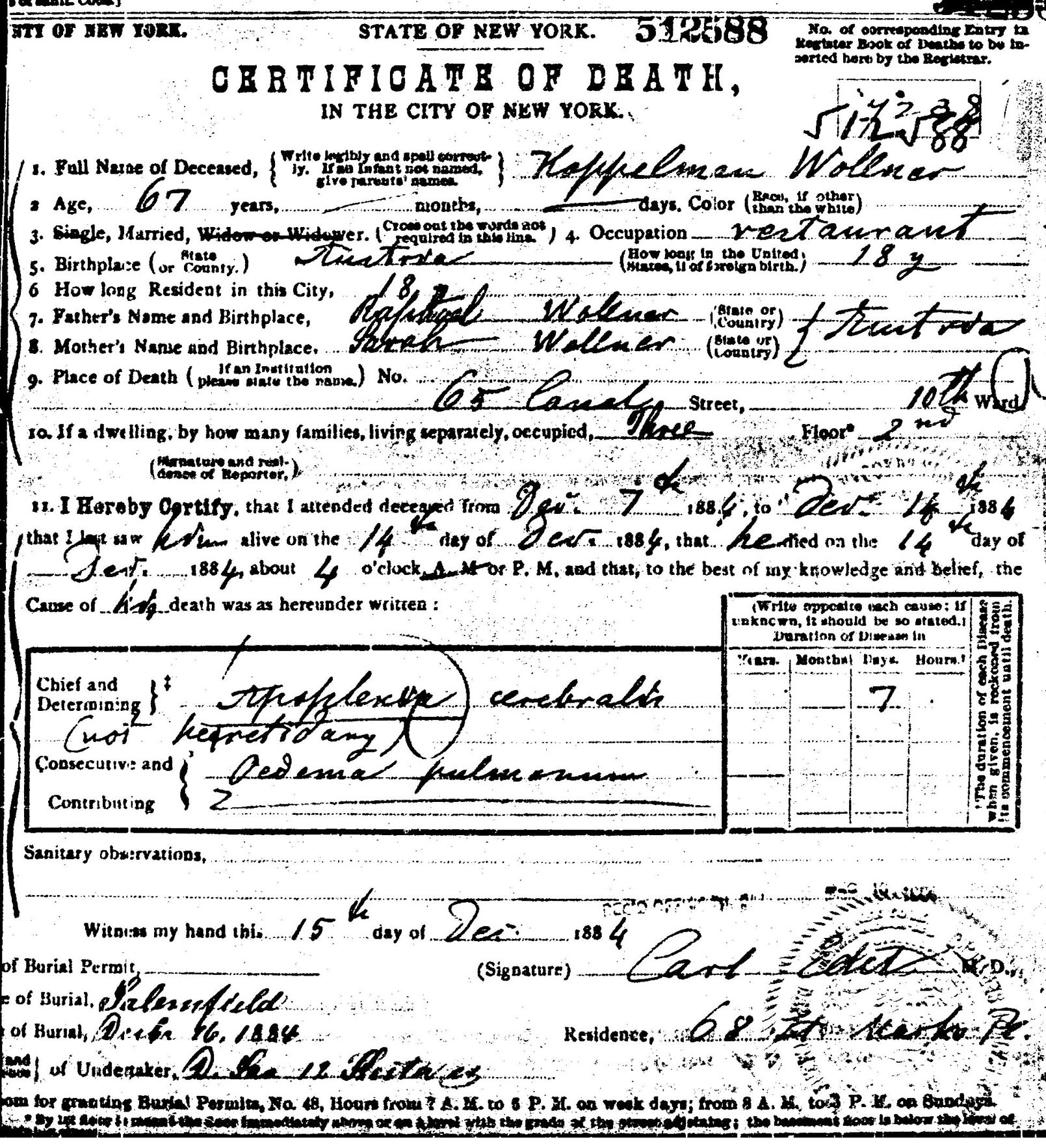 Find your roots family history and genealogy services dr cp koppelman wollners death certificate xflitez Image collections